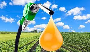 http://arbia.com.ar/imagenes/biodiesel.jpg