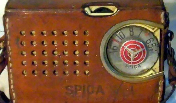http://arbia.com.ar/imagenes/spica.jpg